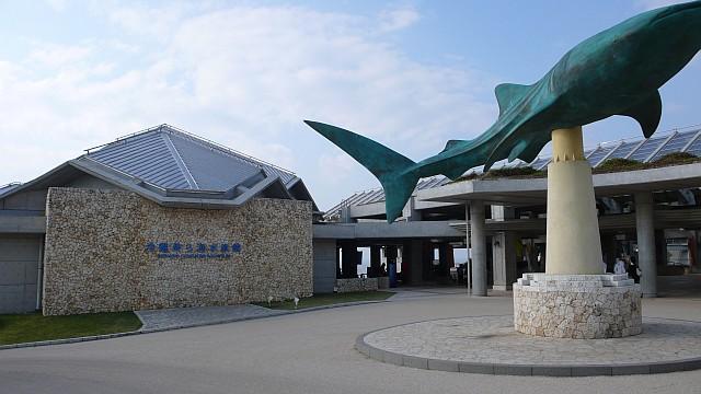 美ら海水族館前景