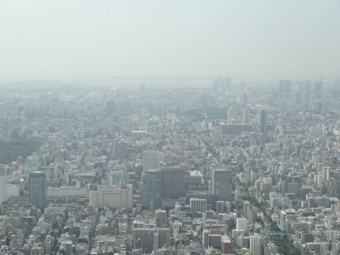 skytree_south.jpg