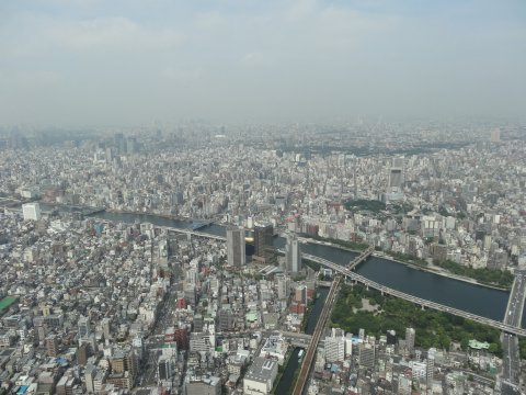skytree_west.jpg